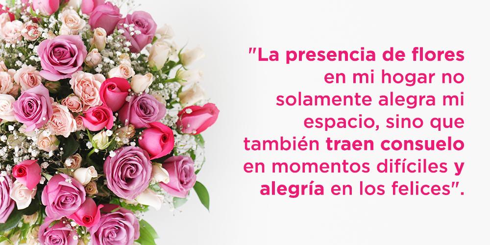 La presencia de flores en mi hogar no solamente alegra mi espacio, sino que tambien traen consuelo en momentos dificiles y alegria en los momentos felices.