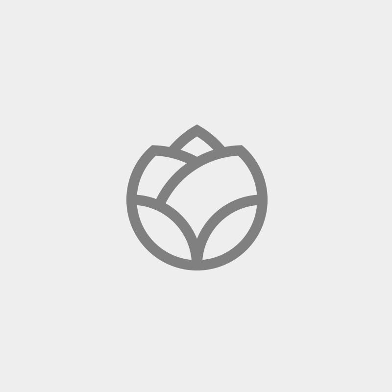 Imagen para 10 Rosas Audi Calzada - Vacía